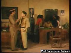 Raat Rani - B grade Pellicle - Indian Masala Adults Only